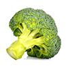 4 cups broccoli heads